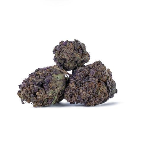 Purple_Haze_1024x1024_7e44ffe7-92c2-4d85-91e8-239c5f7baac4_480x